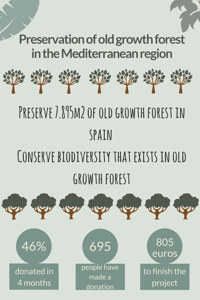Preservation of old growth forest in the Mediterranean region